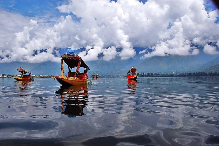 Dal Lake's Shikaras