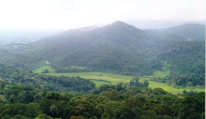 coorg6