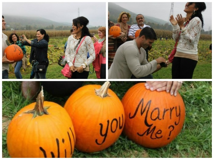 halloween wedding proposal