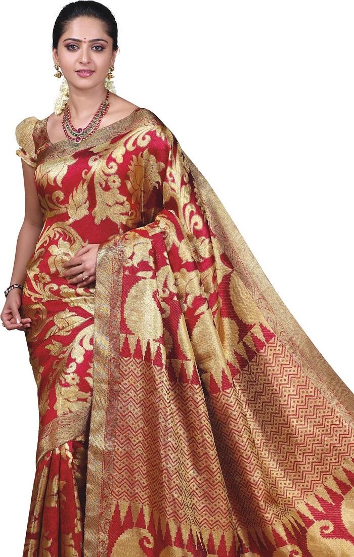Graceful Saree drape