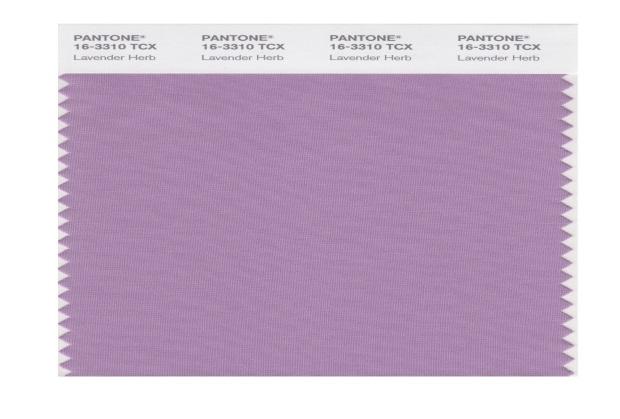 pantone-lavender-herb