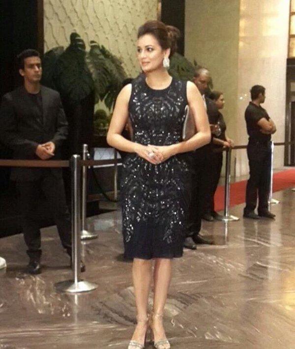 Dia Mirza at Preity Zinta reception