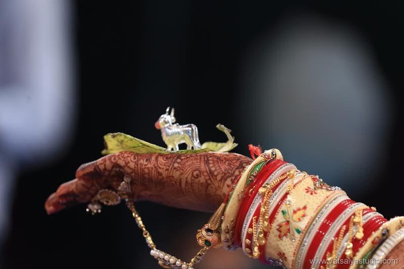 vatsalya studio photography Gujarat