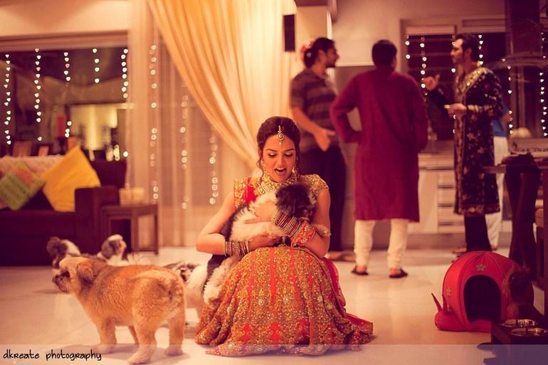 pets at weddings Indian