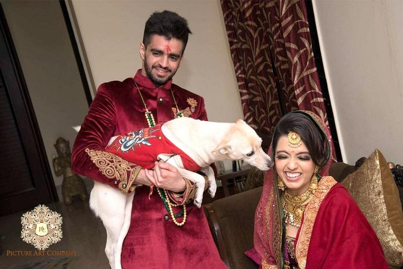 pets at Indian weddings